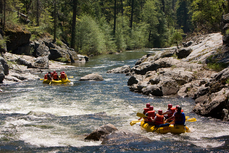 Middle fork salmon river types of and rivers on pinterest for Stanislaus river fishing