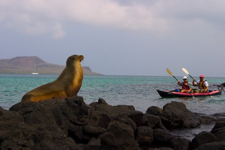 Sea Kayaking the Enchanted Islands
