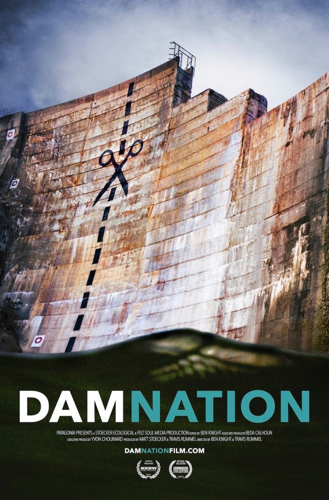 DamNation Movie Poster