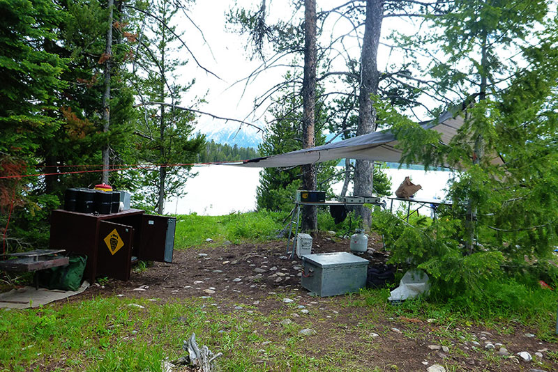 Leave No Trace: Tips to Keep Your Campsite Clean and Pristine