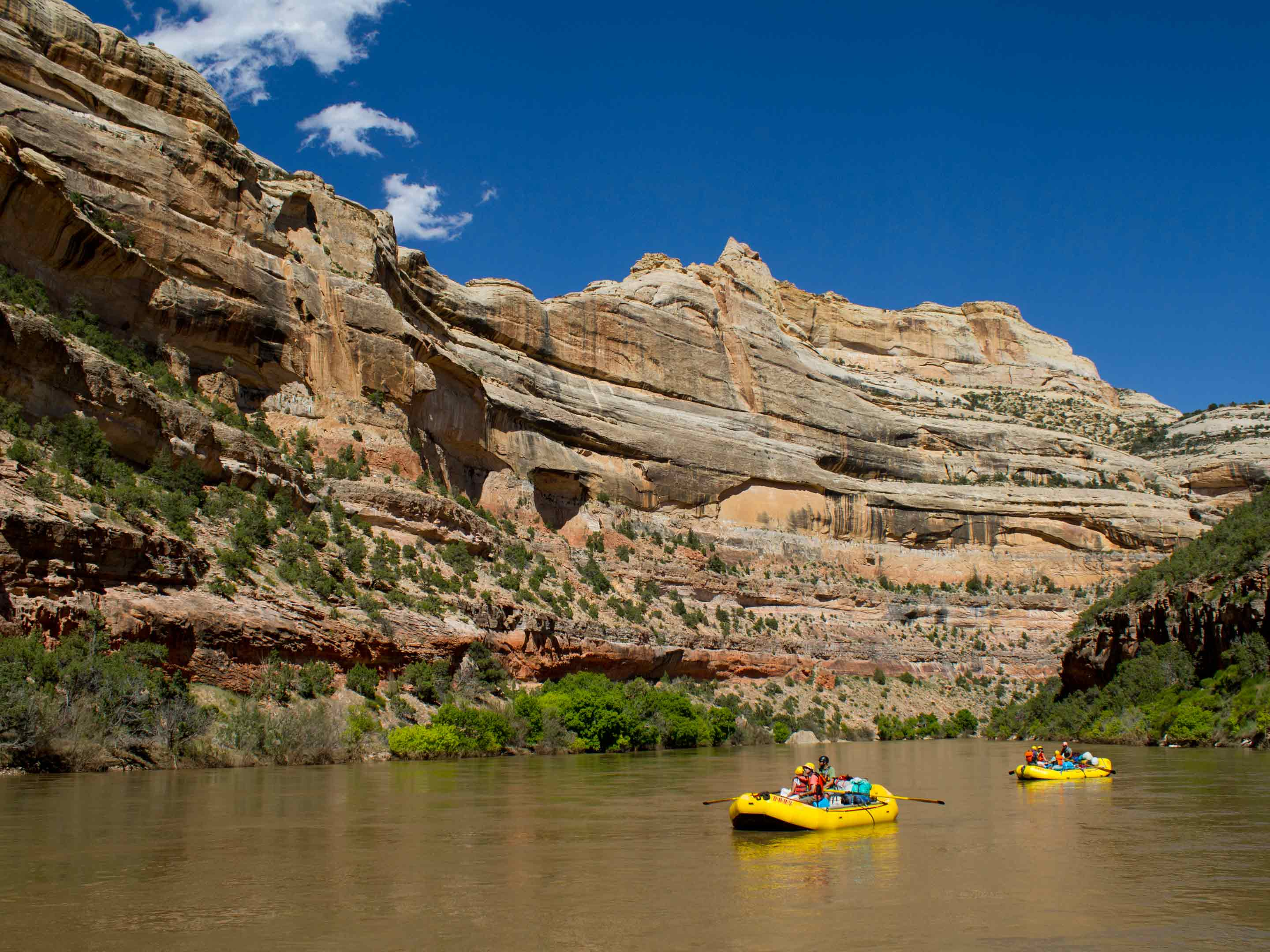 Yampa River Rafting Colorado Rafting With Oars