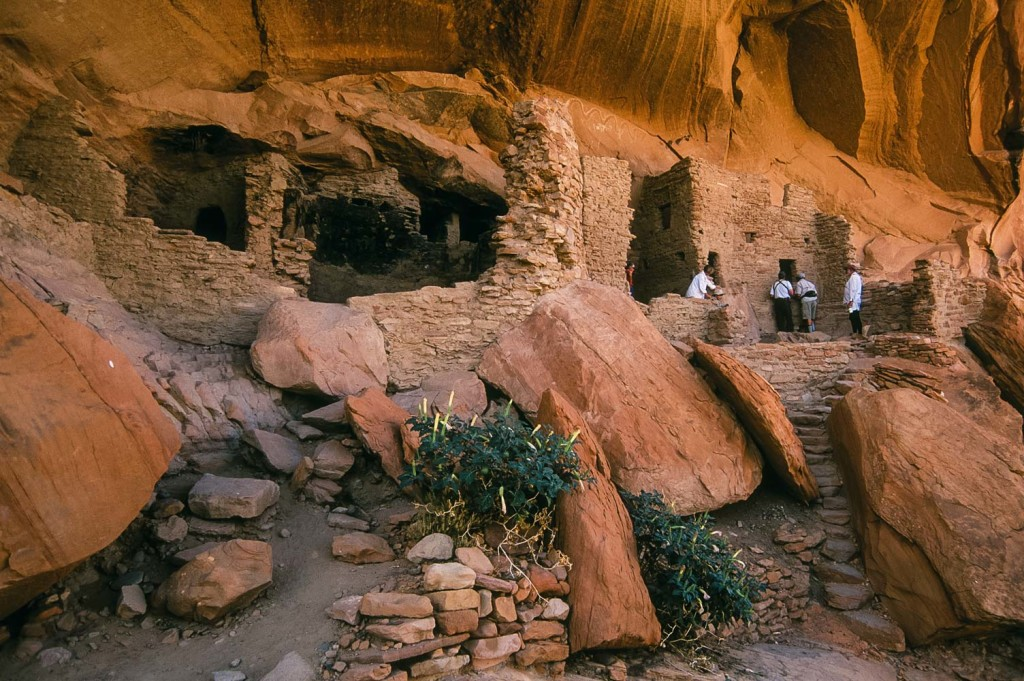 Top 5 Reasons To Visit Bears Ears National Monument