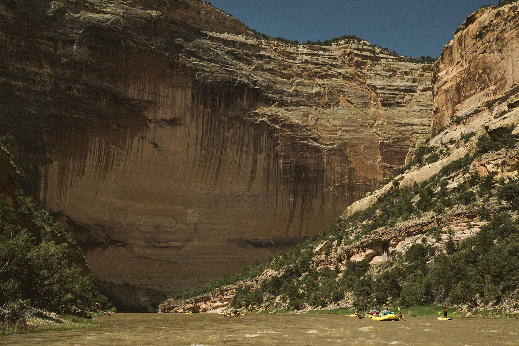 Yampa River Rafting | Photo Logan Bockrath