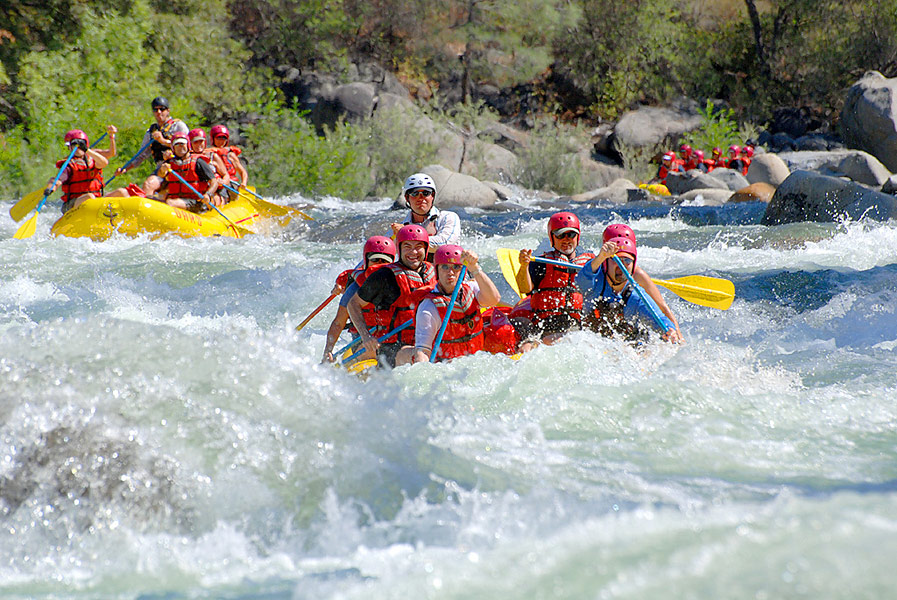 Tuolumne River Rafting | Ram's Head Rapid