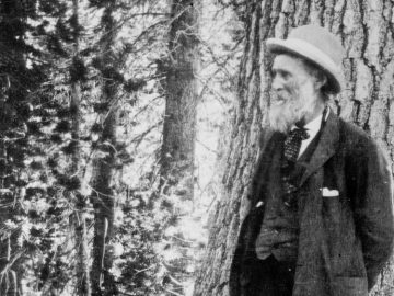 Who was John Muir?