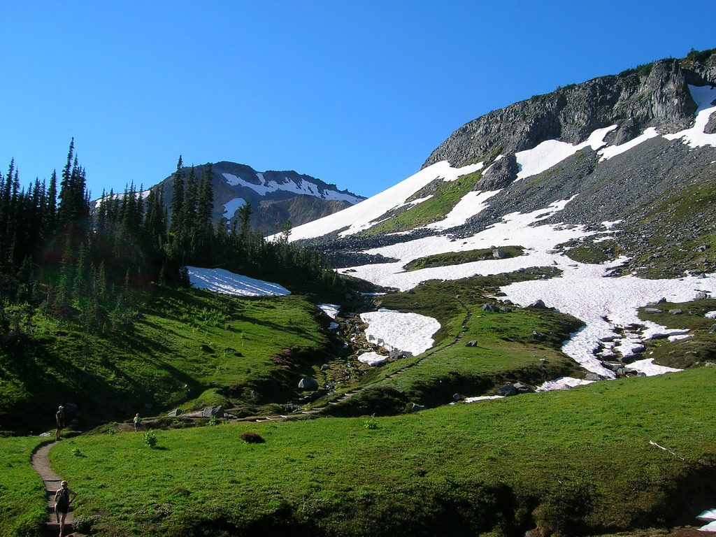 9 National Park Views That are Worth the Effort | Mt. Rainier, Rainier National Park