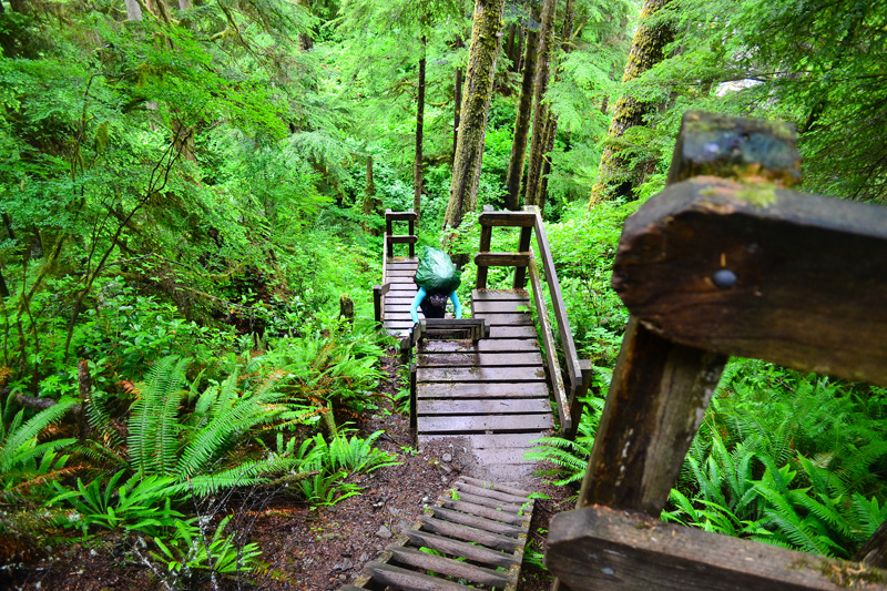 Hiking British Columbia's West Coast Trail