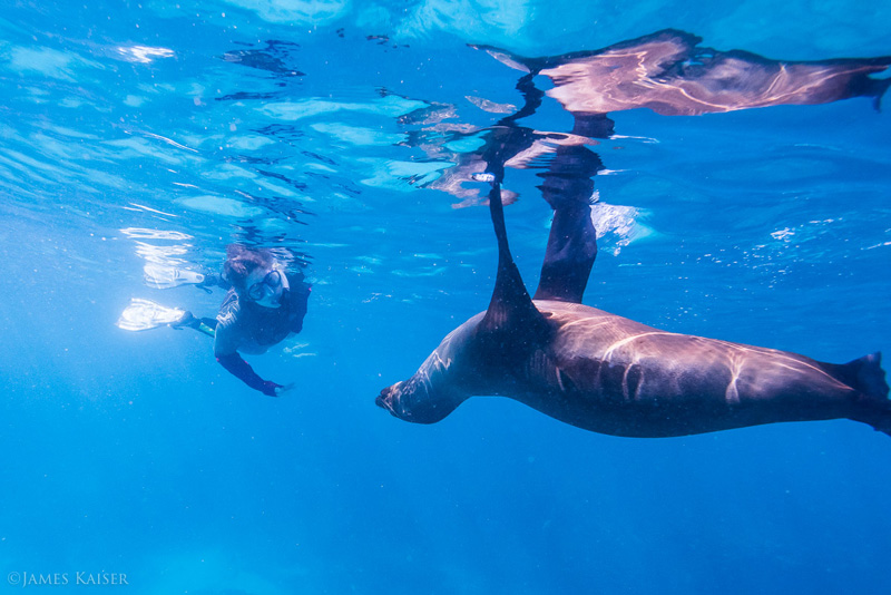 Must-visit World Heritage Sites for Adventurous Travelers | Galapagos Islands