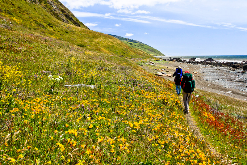5 Adventurous Weekend Getaways in California